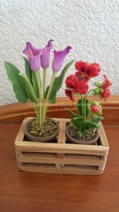 Miniature silk plants in pots